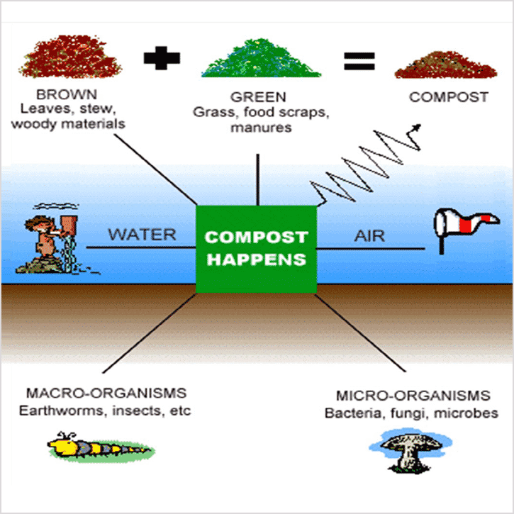 How_Compost_Happens